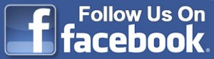 facebook follow-button